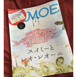 ハクセンシャ(白泉社)のMOE (モエ) 2019年 06月号(その他)