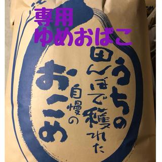 《Mてい様専用》令和1年産ゆめおばこ 精米10kg(米/穀物)