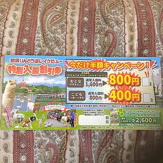 那須りんどう湖レイクビュー割引券(遊園地/テーマパーク)