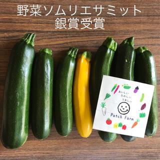 【限定】初夏のズッキーニ(野菜)