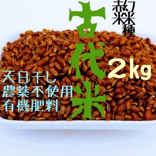 【天日干し】赤米2kg【農家直売】玄米 無農薬 有機肥料 発芽玄米 マクロビ(米/穀物)