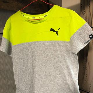 PUMA - プーマ Tシャツ130と140セット