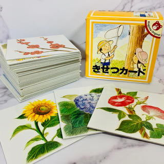 こぐま会 きせつカード 48枚 カード教材 知育