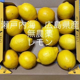 広島県産 無農薬 レモン😋(フルーツ)