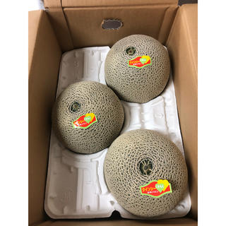熊本県クインシーメロン3玉 箱込み4.8kg(フルーツ)