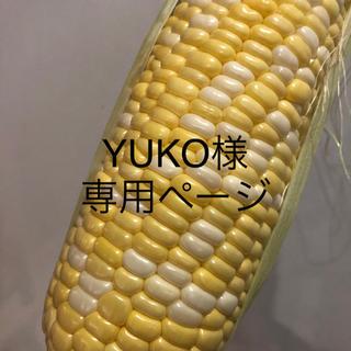 YUKO様専用ページ とうもろこし(野菜)