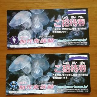 加茂水族館 入館チケット 5枚(水族館)