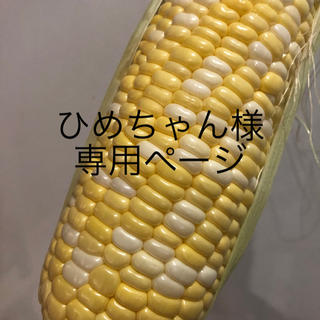 ひめちゃん様専用ページ とうもろこし(野菜)