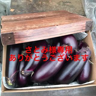 お多福野菜🍆千両茄子(野菜)