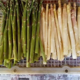 専用  ホワイトアスパラ グリーンアスパラ(野菜)