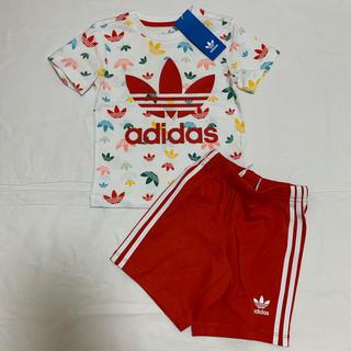 アディダス(adidas)の新品 アディダス オリジナルス 半袖 Tシャツ ハーフ パンツ セット 70(その他)
