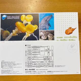 新江ノ島水族館 ペア 2枚セット(水族館)