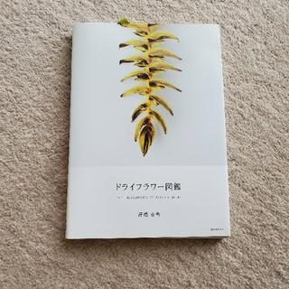 ドライフラワ-図鑑(趣味/スポーツ/実用)