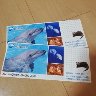 江ノ島水族館チケット 2枚(水族館)