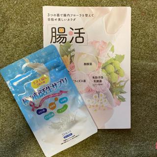 極み菌活性サプリ 31錠(ダイエット食品)