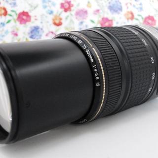 キヤノン(Canon)の【手ぶれ補正機能★】Canon EF 75-300mm IS 超望遠レンズ(レンズ(ズーム))