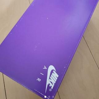 ナイキ(NIKE)のNIKE エアマックス90 空靴箱(その他)