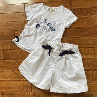 ザラ(ZARA)のZARA♡Tシャツ122 ショートパンツ128(Tシャツ/カットソー)