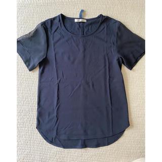 セオリー(theory)のTシャツ カットソー トップス BEIGE オンワード(カットソー(半袖/袖なし))