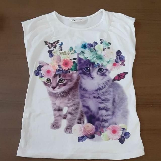 H&M(エイチアンドエム)のH&M ネコTシャツ120cm 未使用 キッズ/ベビー/マタニティのキッズ服女の子用(90cm~)(Tシャツ/カットソー)の商品写真