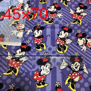 ディズニー(Disney)のディズニー ミニー 生地 はぎれ (生地/糸)