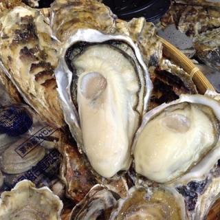 ラムサール条約登録地直送 生食可 鮮度抜群 5.5kg Lサイズ殻牡蠣 送料無料(魚介)