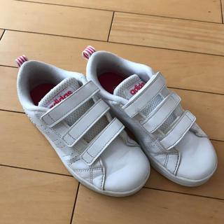 adidas - adidas アディダスネオ スニーカー 17㎝