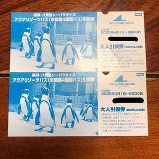 八景島シーパラダイス アクアリゾーツパス 引換券(水族館)