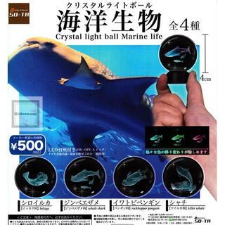 クリスタルライトボール 海洋生物 ガチャガチャ 4種コンプリートセット(その他)