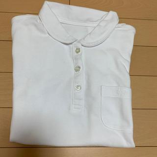 ベルメゾン(ベルメゾン)のポロシャツ 150センチ 女の子用(Tシャツ/カットソー)