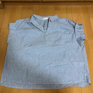 テチチ(Techichi)のルノンキュール トップス(カットソー(半袖/袖なし))