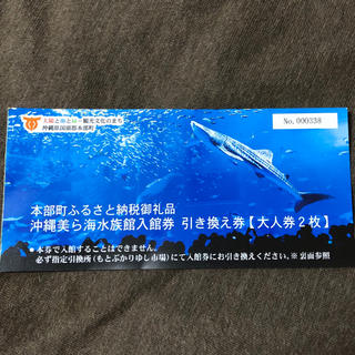 美ら海水族館 大人2枚 引換 チケット(水族館)