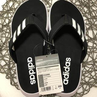 adidas - アディダス  adidas 新品 サンダル ビーサン EG2069 25.5