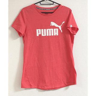 プーマ(PUMA)のPUMA tシャツ  レディース  XL(Tシャツ/カットソー(半袖/袖なし))