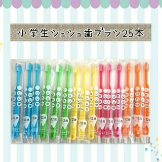 小学生シュシュ歯ブラシ25本(歯ブラシ/歯みがき用品)