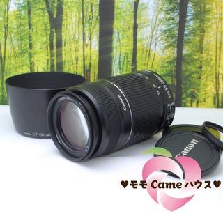 キヤノン(Canon)のキャノン望遠レンズ★EF-S 55-250mm手ブレ補正つき☆854-1(レンズ(ズーム))