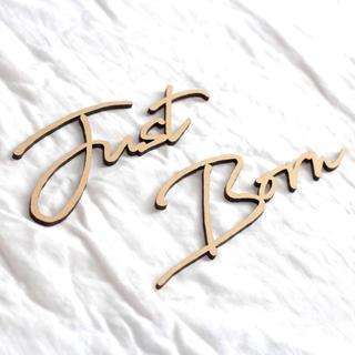 ◉即納◉木製 Just Born ウッドレター⑹ (ガーランド)