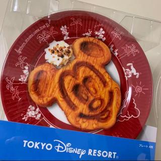 ディズニー(Disney)の本日限定!ディズニーリゾート【パークフード  メラミンプレート4枚セット】(食器)