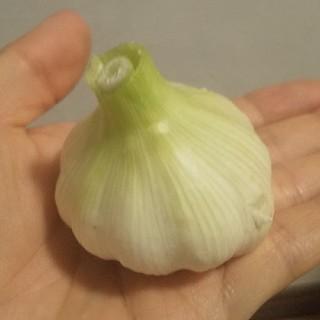 国産ニンニク 1キロ(野菜)