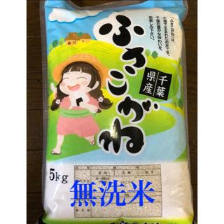 ふさこがね  無洗米 5kg(米/穀物)