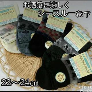 綿混*部分シースルー靴下5足セット【22~24㎝】