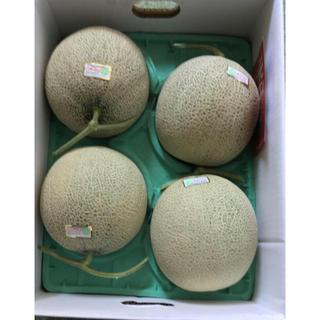 北海道赤肉メロン  1箱、6玉 送料込み(フルーツ)