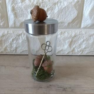 【森の贈り物】レッドオークの大きなどんぐりの瓶詰め アンティーク調Key付(ドライフラワー)