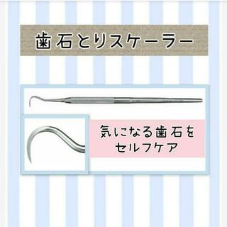 歯石とりスケーラー(口臭防止/エチケット用品)