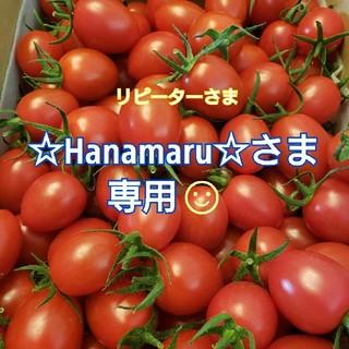 4㎏ ~☆Hanamaru☆~さま専用です☺️ ミニトマト(野菜)