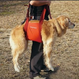 モンベル(mont bell)のmont-bell 犬用 キャリーハーネス Lサイズ(旧タイプ)(犬)