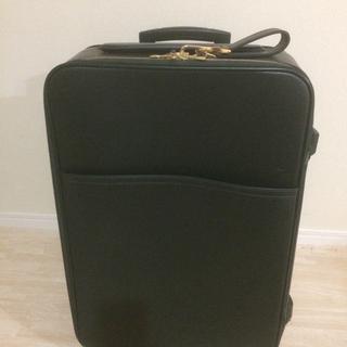 ルイヴィトン(LOUIS VUITTON)の【綺麗目】ルイヴィトン キャリーケース ペガス55 タイガ(トラベルバッグ/スーツケース)