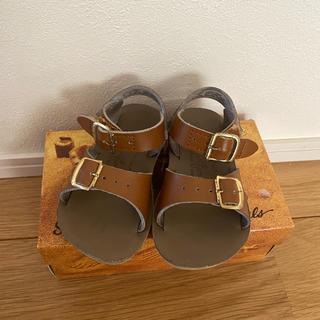コドモビームス(こどもビームス)のsalt water sandal  5(サンダル)
