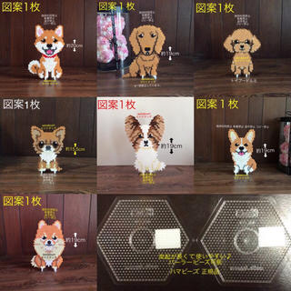 seinatouchアイロンビーズ図案7枚透明六角Lプレート2枚柴犬トイプーポメ(型紙/パターン)