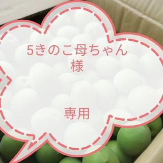 ☆5きのこ母ちゃん様専用☆【優品・3L】青梅4kg 送料込み(フルーツ)